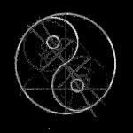 yin yang structure